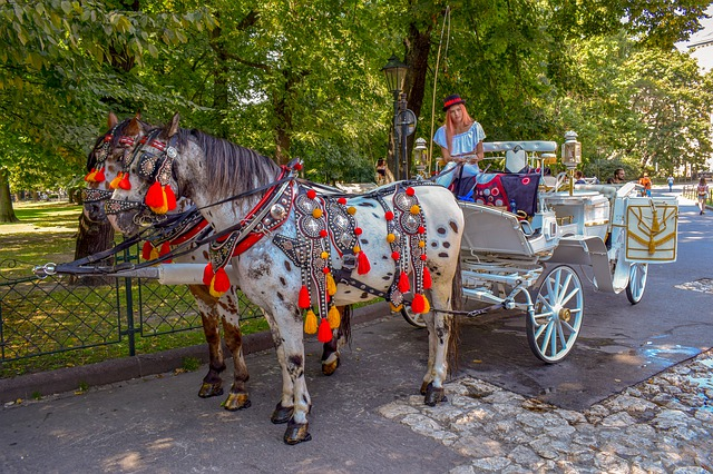 carriage-4463823_640