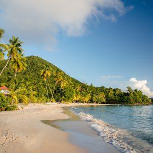 Plage de l'anse Figuier à la Martinique